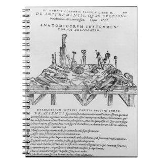 Instrumenterar för dissekeringar, illustration frå anteckningsbok