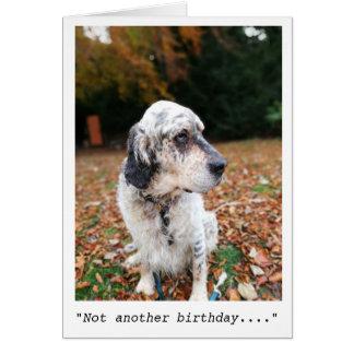 Inte ett annat födelsedagkort hälsningskort