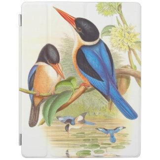 Ipad cover för Goulds Kingfisherfåglar iPad Skydd