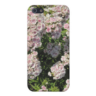 iPhone 4 flår: Rosa- och vitblommigt iPhone 5 Cover