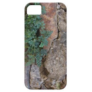 iPhone 5 Case-Mate SKYDD