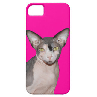 iPhone 5 kattNinja för fodral | Sphynx rosor iPhone 5 Case-Mate Skal