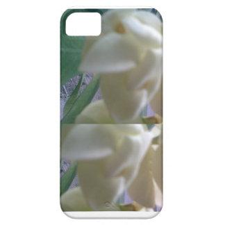Iphone case iPhone 5 fodraler