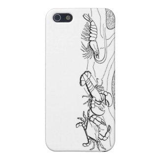 iphone case/skaldjur iPhone 5 skal