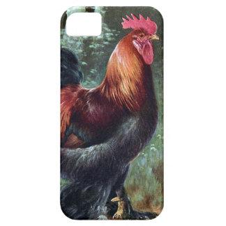 iPhoneSE + iPhone 5/5S, knappt där - tupp iPhone 5 Case-Mate Cases