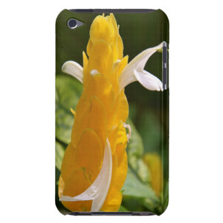 ipod touch case - klubba