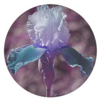 Iris av deppighet tallrik