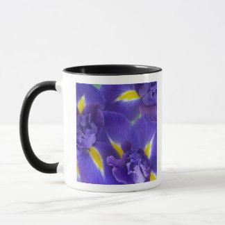 Irisblommor Mugg