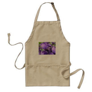 Irises i blom förkläde