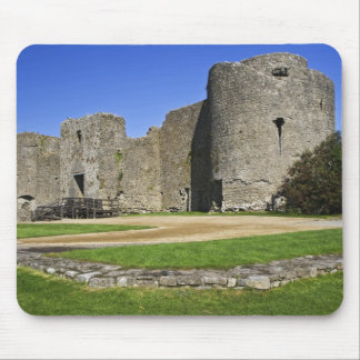 Irland Roscommon. Beskåda av fördärvar av Roscommo Musmattor