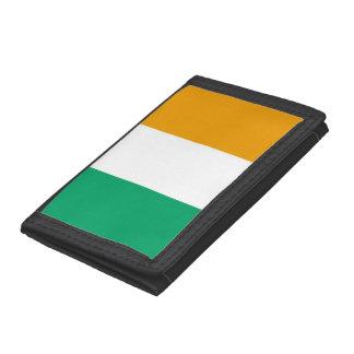 Irländsk flagga
