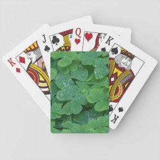 Irländsk Shamrock som leker kort Spelkort