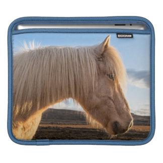 Island. Porträtt av den isländska hästen iPad Sleeve