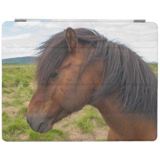 Island. Södra region. Selfoss. Isländsk häst 1 iPad Skydd