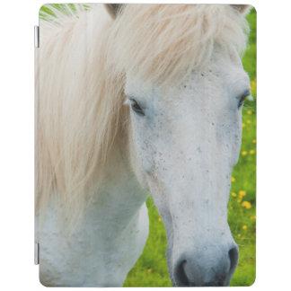 Island. Södra region. Selfoss. Isländsk häst 2 iPad Skydd