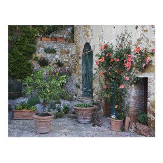 Italien Petroio. Inlagda växter dekorerar en Vykort