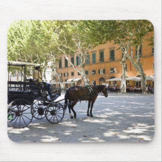 Italien Tuscany, Lucca, Barouche på piazzaen Musmatta