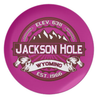 Jackson Hole hallon Tallrik