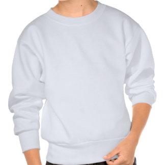 Jag älskar centra lång ärmad tröja