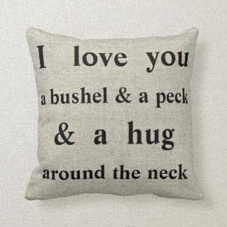 Jag älskar dig en Bushel & en dekorativ kudde för