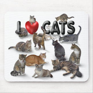 Jag älskar katter musmattor