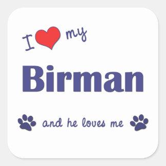 Jag älskar min Birman (den Male katten) Fyrkantigt Klistermärke