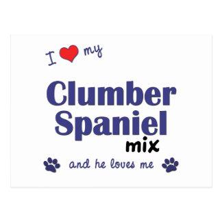 Jag älskar min blandning för den Clumber spanielen Vykort