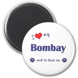 Jag älskar min Bombay (den Male katten) Magnet