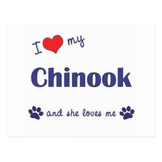 Jag älskar min Chinook (den kvinnliga hunden) Vykort