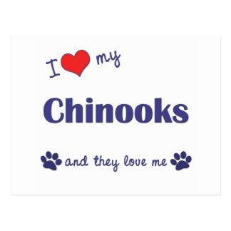 Jag älskar min Chinooks (åtskilliga hundar) Vykort