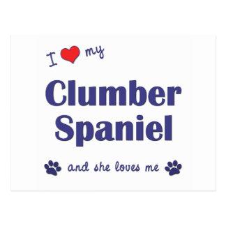 Jag älskar min Clumber Spaniel (den kvinnliga Vykort