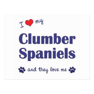 Jag älskar min Clumber Spaniels (åtskilliga Vykort