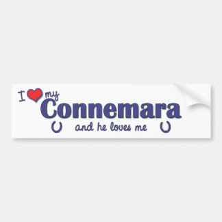 Jag älskar min Connemara (den Male ponnyn) Bildekal