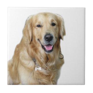 Jag älskar min glädje för hundfredlugn kakelplatta