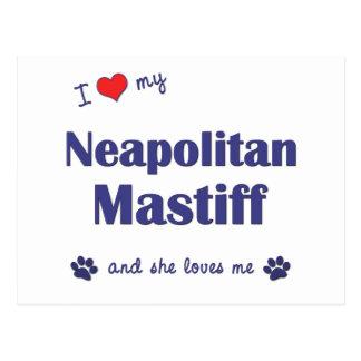 Jag älskar min Neapolitan Mastiff (den kvinnliga Vykort
