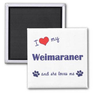 Jag älskar min Weimaraner (den kvinnliga hunden) Magnet