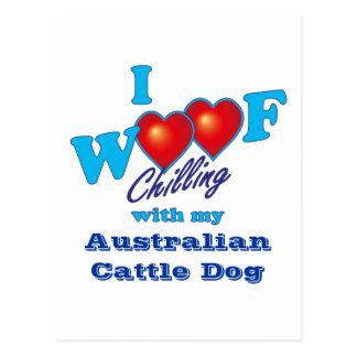 Jag australiensiskt nötkreatur för Woof förföljer Vykort