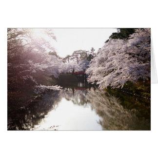 Jag drömm av Sakura Hälsningskort
