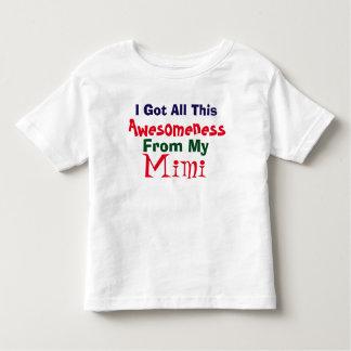 Jag får min Awesomeness från min T-tröja Mimi Tshirts