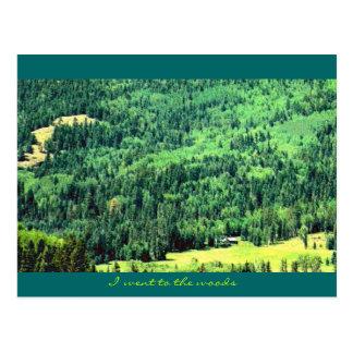 Jag gick till skogen vykort
