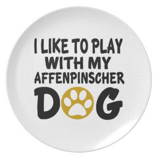 Jag gillar för att leka med min Affenpinscherhund Dinner Plate