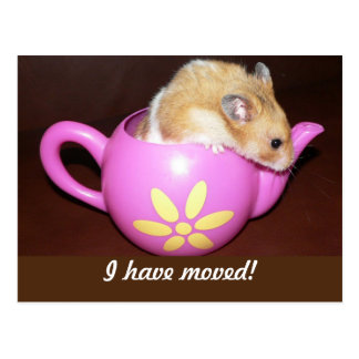 Jag har flyttat hamsteren vykort