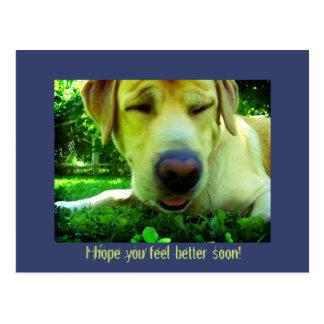 Jag hoppas dig den bättre känselförnimmelsen vykort