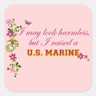 Jag lyftte en marin- (EGA) Fyrkantigt Klistermärke