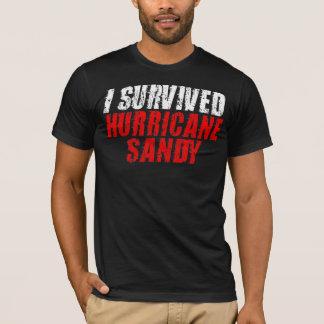 Jag överlevde den sandiga bekymrade T-tröja för Tee
