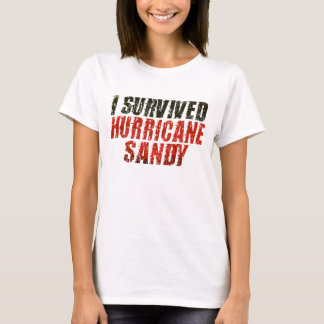 Jag överlevde den sandiga bekymrade T-tröja för Tröja