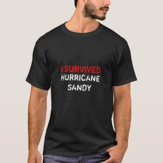 jag överlevde den sandiga orkanen tröjor