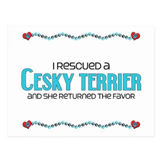 Jag räddade en Cesky Terrier (den kvinnliga Vykort