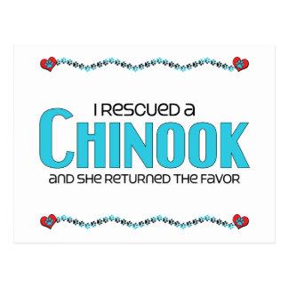 Jag räddade en Chinook (den kvinnliga hunden) Vykort