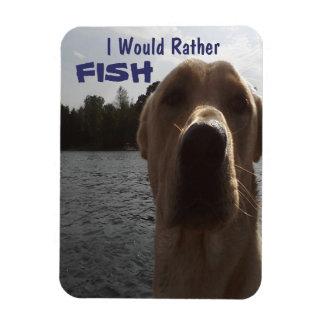 Jag skulle den snarlika fisken labrador magnet